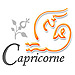 horoscope amour capricorne